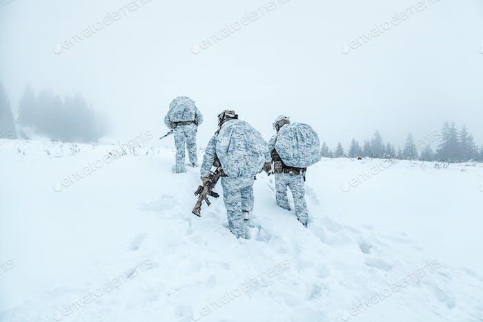 Winterkriegsführung der arktischen Berge