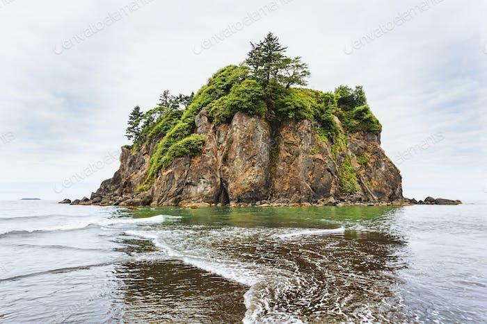 Sea stack on Ruby Beach, Kalaloch, Washington, Vereinigte Staaten