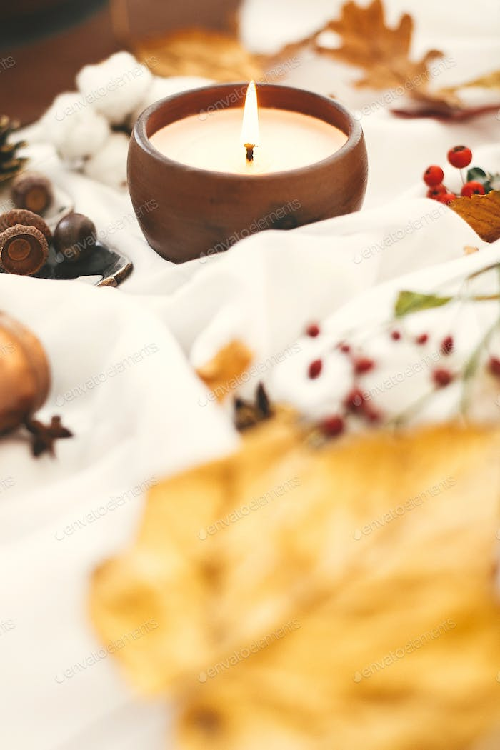 Hygge lifestyle. Candle, berries, fall leaves, herbs, acorns, nuts