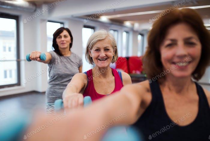 Gruppe von fröhlichen weiblichen Senioren im Fitnessstudio tun Übung mit Hanteln.