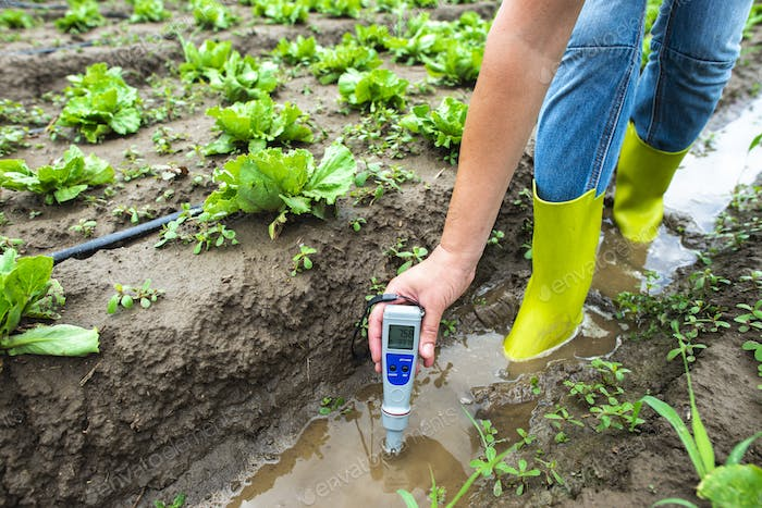 Woman mesures irrigation water with digital PH meter in watering