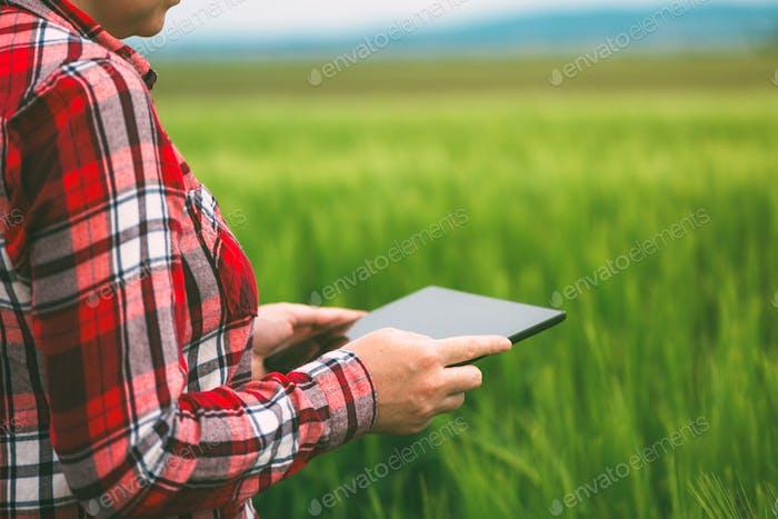 Female farmer using tablet computer in wheat crop field