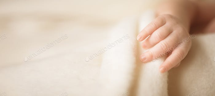 Little hand of newborn baby. Mom and her child. Maternity, family, care and birth concept. Copy