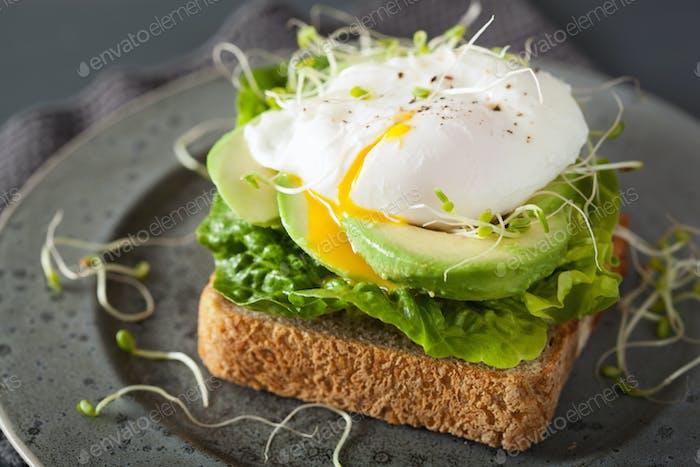 Frühstückstoast mit Avocado, pochiertem Ei und Luzerne-Sprossen