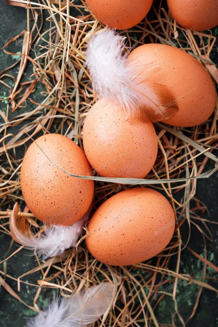 Rohe Hühnereier auf Stroh