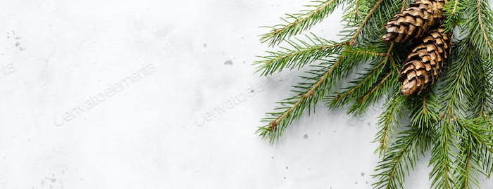 Christmas, Noel or New Year banner background with xmas fir tree