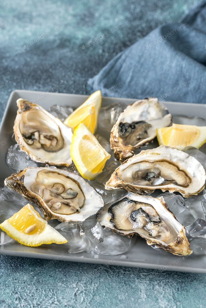 Raw oysters on the gray background