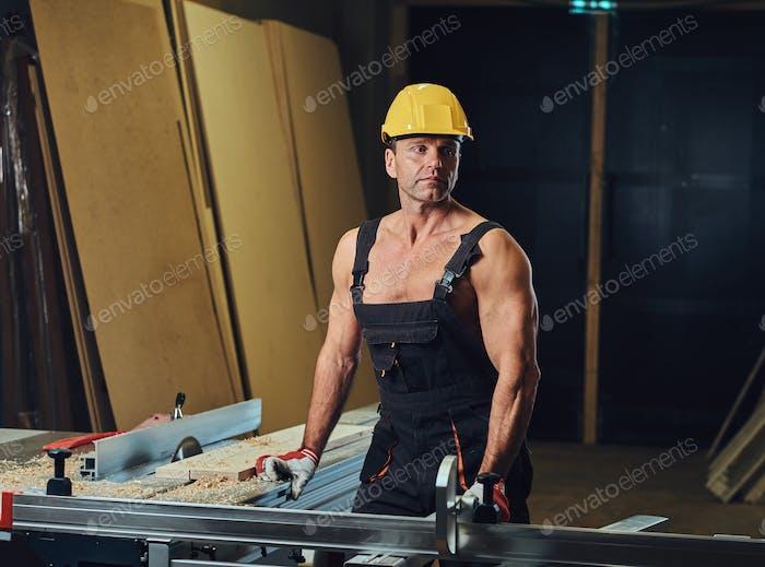 Portrait of shirtless muscular carpenter.