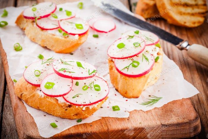 toasts with cream cheese, organic radish, onion and dill