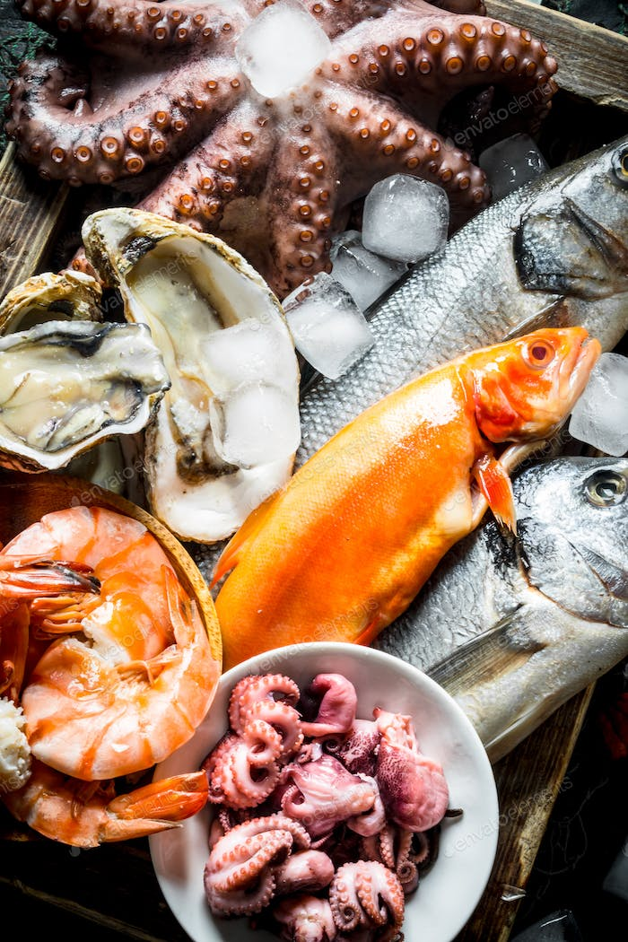 A variety of fresh seafood with ice cubes.