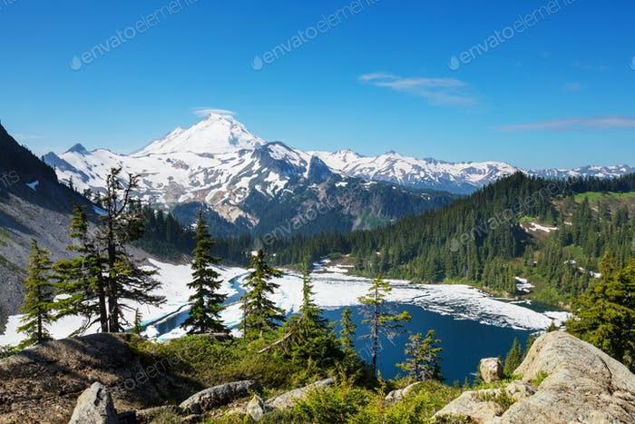 Mt Baker Area