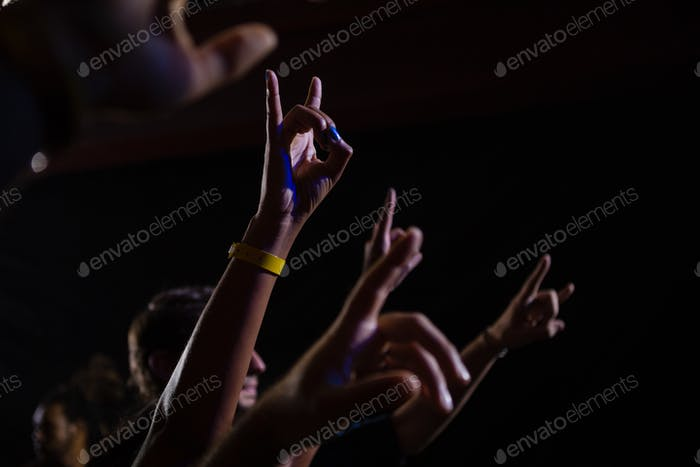 Audience dancing at a rock concert