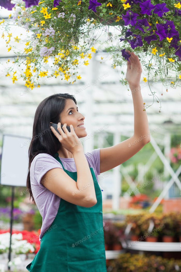 Woman looking at flowers in hanging basket working in garden center and phoning