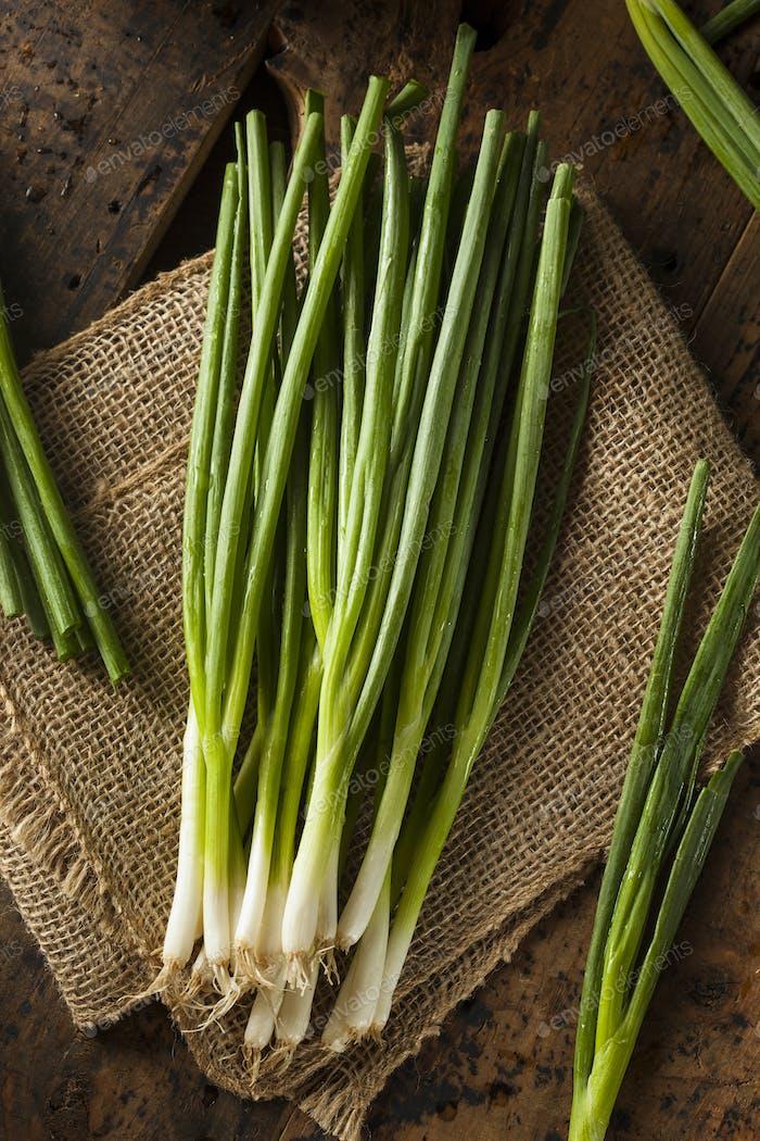 Organic Healthy Green Onion