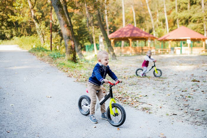 Twin toddler sibling boy and girl in autumn park, riding balance bike