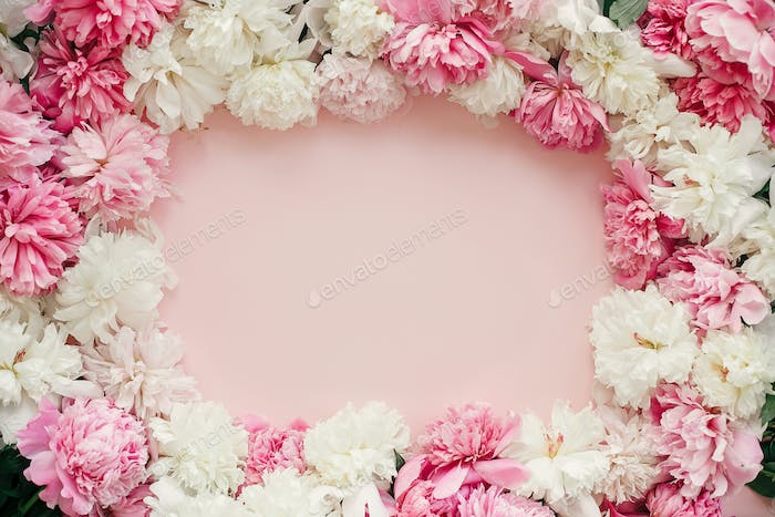 Pink and white peonies frame on pastel pink paper