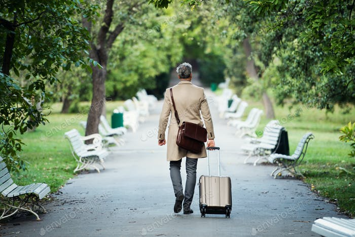 A rear view of businessman with suitcase walking in a park in a city.