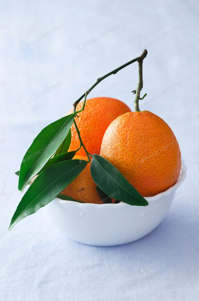 Multiple ripe tangerines