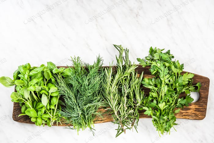 Collection of fresh garden herbs on marble table