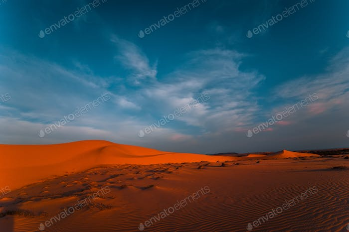 Lonely sand dunes under amazing evening sunset sky