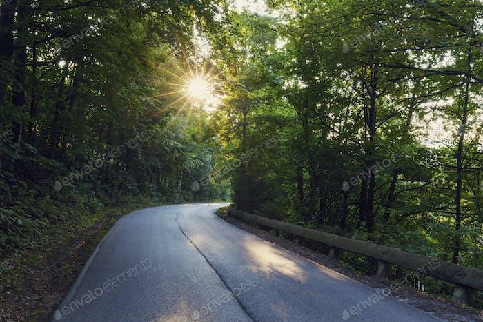 Straße in Schlesischen Beskiden in Polen