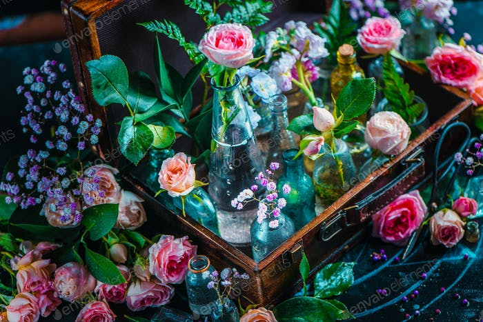 Flower collection, roses, and gypsophila in vintage glass bottles in a suitcase. Botany and perfume