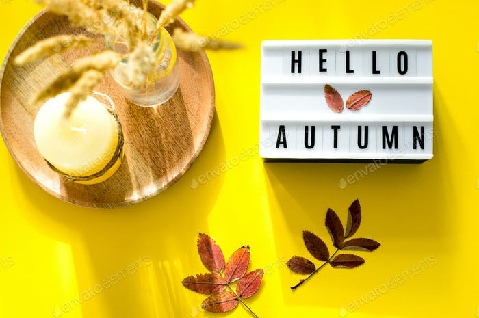 Light box words Hello Autumn on yellow background. Colorful autumn leaf, candle and dried flowers