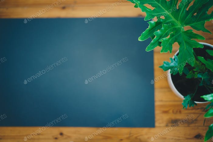 Yoga mat next to a plant, top view