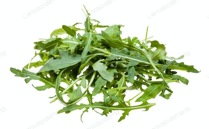Haufen aus frischen Blättern von Rucola Pflanze isoliert