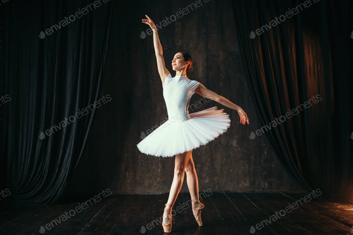 Graceful ballerina dancing in ballet class