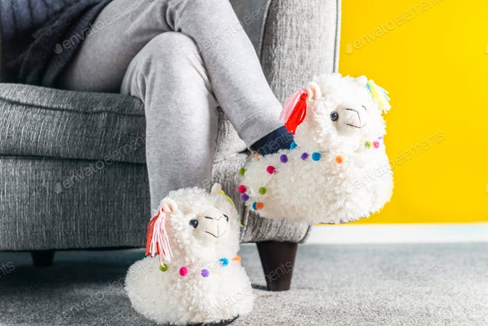 Young girl in cute soft 3d llama slippers