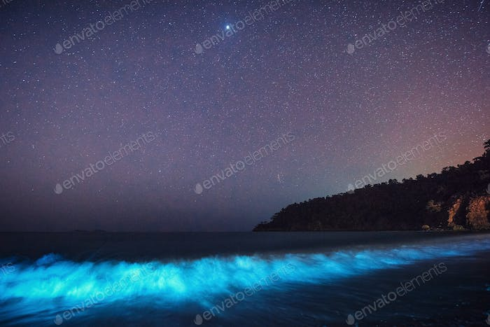 starry night reflected in a water