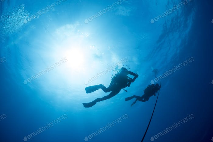 Two Silhouetted Diver Ascend an Anchor Line at the End of a Scuba Dive