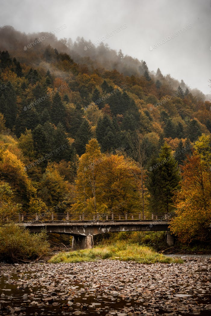 Old Bridge over Mountain River in Bieszczady at Autumn Season. Moody Toned Landscape
