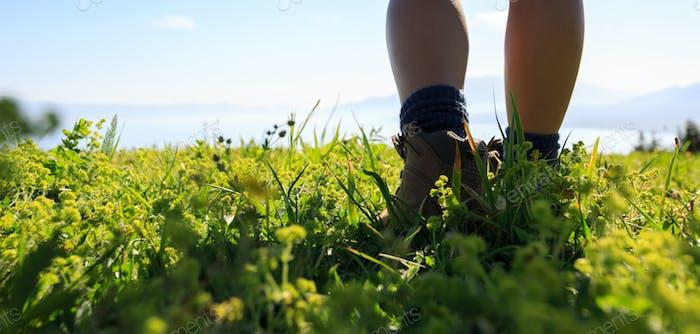Woman hiker hiking on beautiful green mountain peak