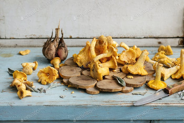 Raw uncooked Chanterelles mushrooms