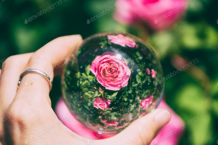 Hand holding a crystal ball and view flowers throught it