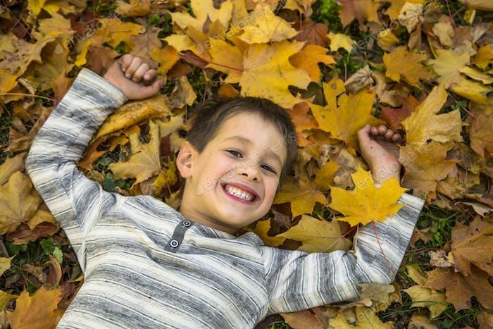 Happy little boy in the autumn park