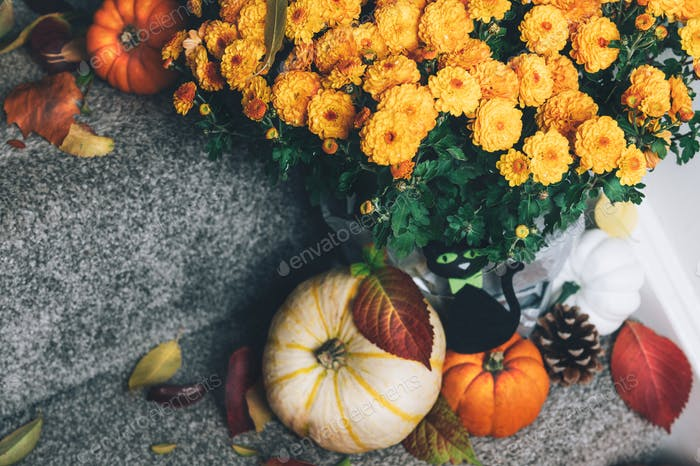 Pumpkins and decorations on stairs