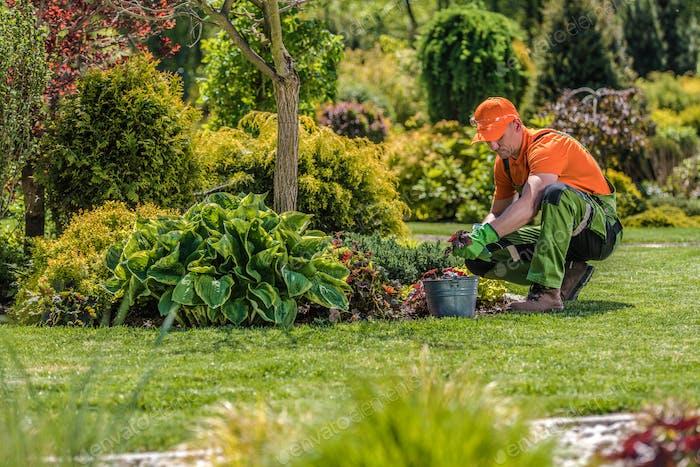 Professional Garden Worker