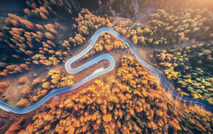 Winding road in autumn forest at sunset in mountains. Aerial vie