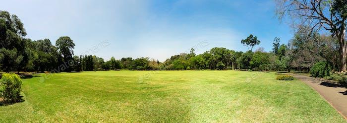 Scenic nature anb blue sky, Ceylon