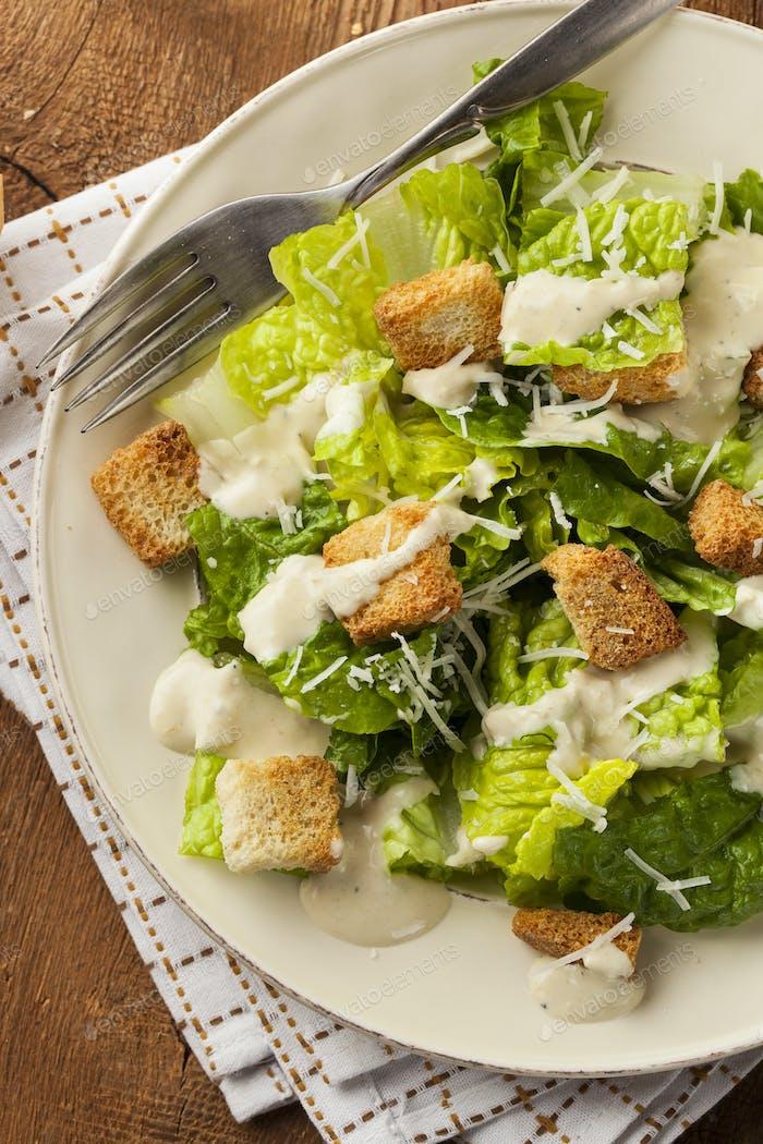 Healthy Green Organic Caesar Salad