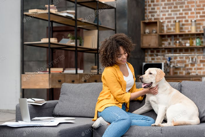 schöne junge Frau, die zu Hause arbeitet und ihren Hund streichelt