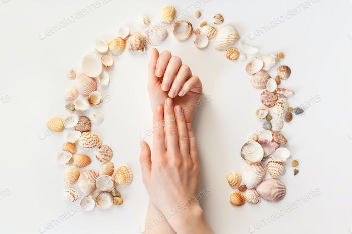 Woman's hands with perfect manicure and seashells frame. Top view photo isolated on white, flat lay