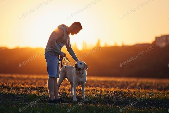 Mann mit Hund bei schönem Sonnenuntergang