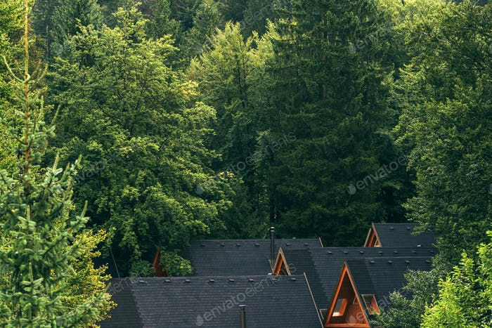 Wooden log cabins roofs in forest