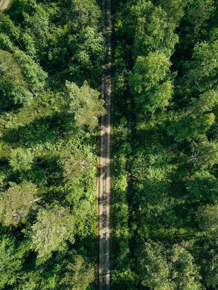 Aerial top view of a country road through a fir forest in summer rural Finland