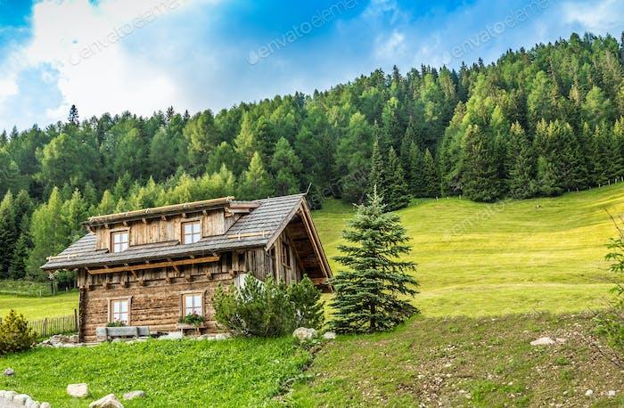 Wooden alpine cabin