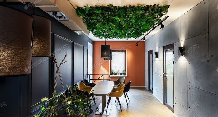 Natural interior in modern cafe with plants on ceiling